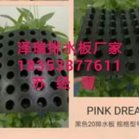 湘潭建筑车库专用(2公分卷材排水板%2.5公分蓄排水板)