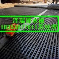 供应%重庆车库高抗压排水板=绿化聚乙烯蓄排水板