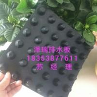北京车库顶板/屋顶绿化排水板/蓄水阻根防水排水板