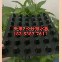 天津2公分车库绿化排水板/蓄排水板生产厂家