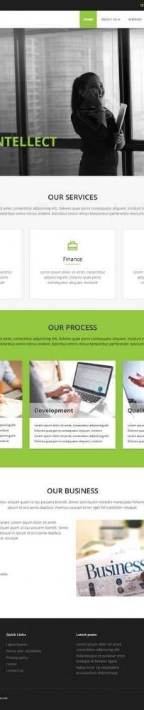 绿色的商业服务咨询网站通用模板