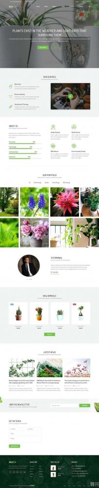 绿色的植物盆栽园艺网站模板
